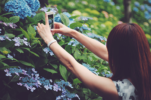 『iPhone』のフリー写真画像[ID:318]
