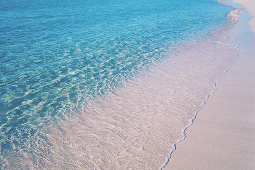 『サンゴ礁』のフリー写真画像[ID:679]