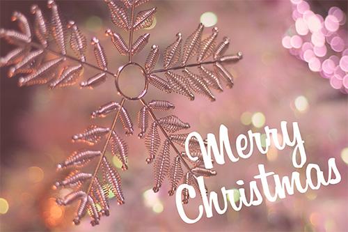 『クリスマスツリー』のフリー写真画像[ID:1938]