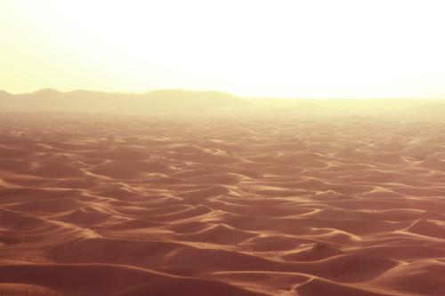 『砂漠』のフリー写真画像[ID:2800]