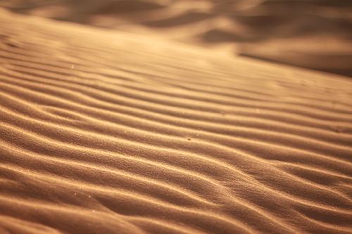 『砂漠』のフリー写真画像[ID:2804]