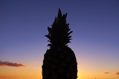 『夏の夕暮れ』のフリー写真画像[ID:3663]