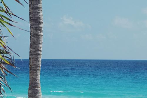 『海』のフリー写真画像[ID:3914]