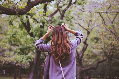 『秋』のフリー写真画像[ID:4185]