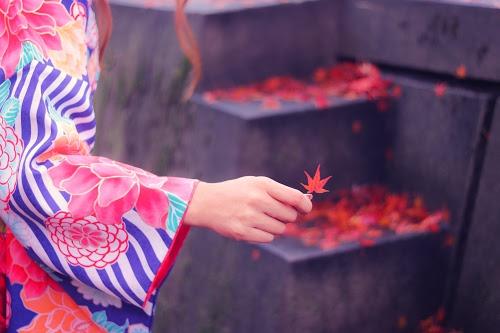 『落ち葉』のフリー写真画像[ID:4527]