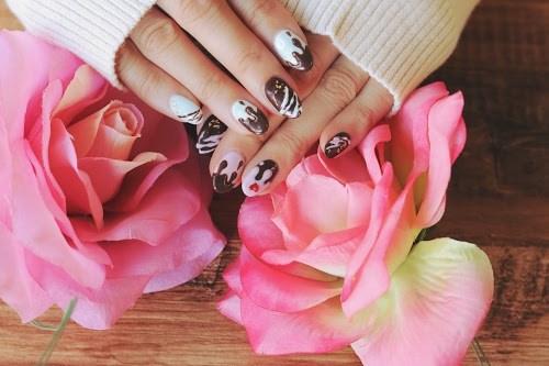 『薔薇』のフリー写真画像[ID:5097]