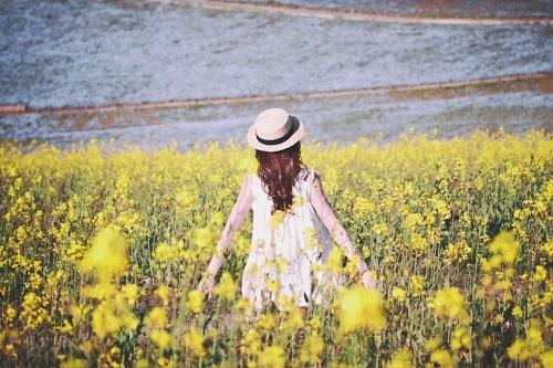 『花畑』のフリー写真画像[ID:5331]