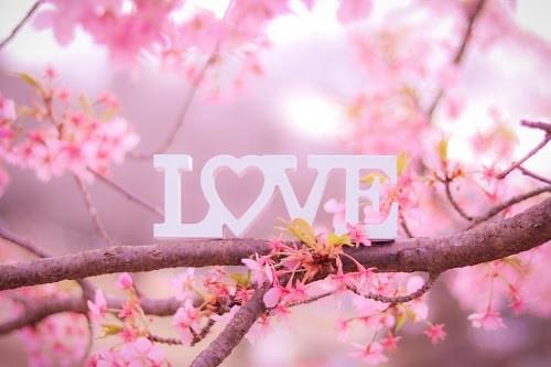 『LOVE』のフリー写真画像[ID:5189]