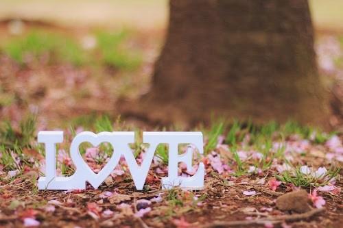 『LOVE』のフリー写真画像[ID:5179]