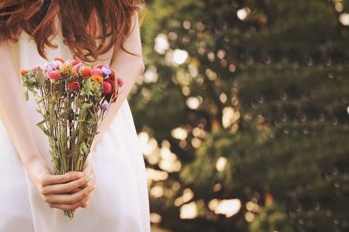 『花・植物』のフリー写真画像[ID:5521]