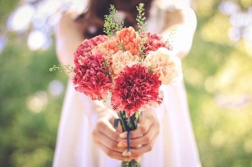 『花・植物』のフリー写真画像[ID:5580]