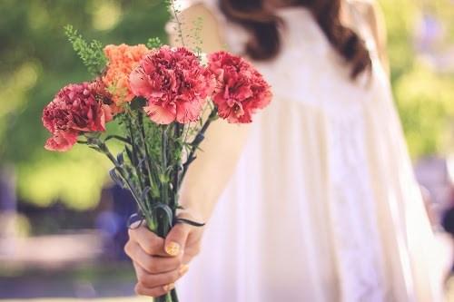 『花・植物』のフリー写真画像[ID:5575]