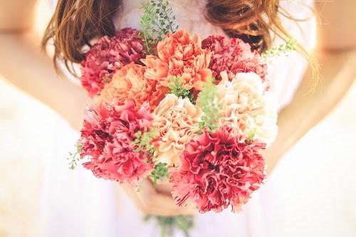 『花・植物』のフリー写真画像[ID:5572]
