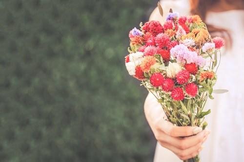 『花・植物』のフリー写真画像[ID:5586]