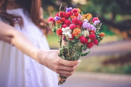 『花・植物』のフリー写真画像[ID:5631]