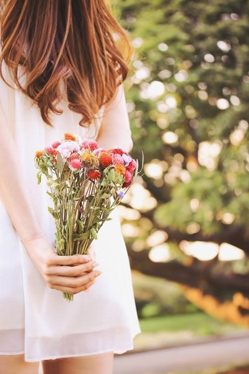 『花・植物』のフリー写真画像[ID:5517]