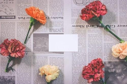『花・植物』のフリー写真画像[ID:5560]