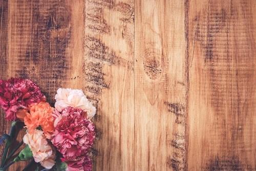 『花・植物』のフリー写真画像[ID:5554]