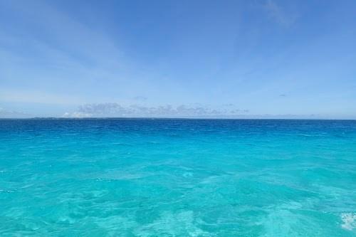 『サンゴ礁』のフリー写真画像[ID:5950]