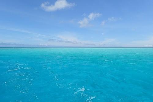 『サンゴ礁』のフリー写真画像[ID:5965]