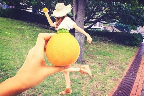 『野菜』のフリー写真画像[ID:6561]