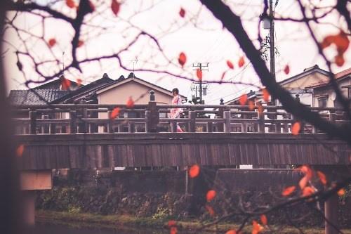 『風景』のフリー写真画像[ID:7198]
