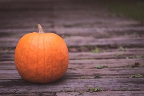 『秋』のフリー写真画像[ID:7400]
