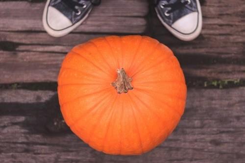 『秋』のフリー写真画像[ID:7403]