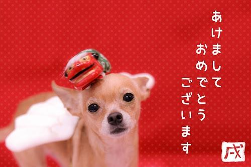 『お正月』のフリー写真画像[ID:7585]