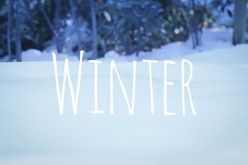 『冬』のフリー写真画像[ID:8098]