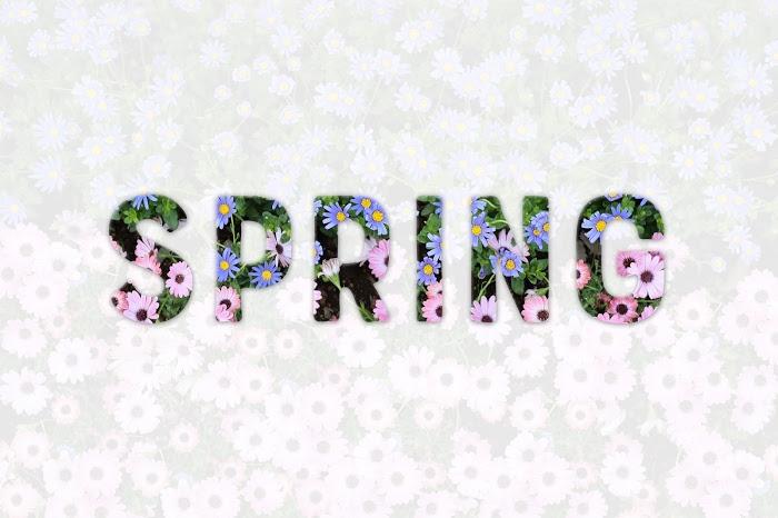『花』のフリー写真画像[ID:8512]