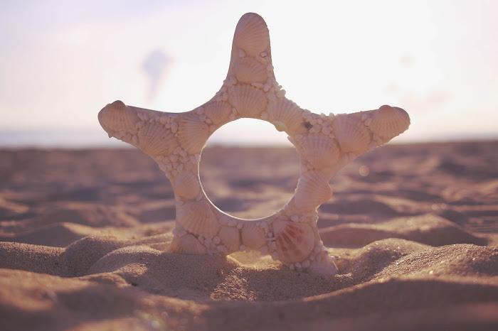 『海』のフリー写真画像[ID:8663]
