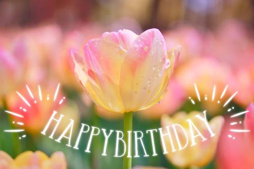 『HAPPY BIRTHDAY』のフリー写真画像[ID:9961]