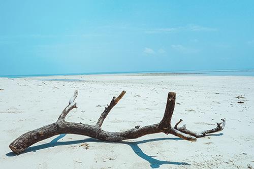『海』のフリー写真画像[ID:10196]