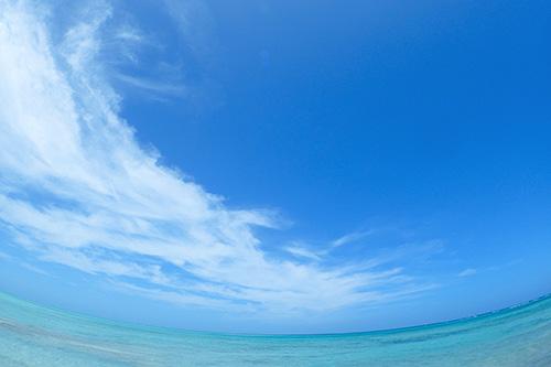 『青空』のフリー写真画像[ID:10254]
