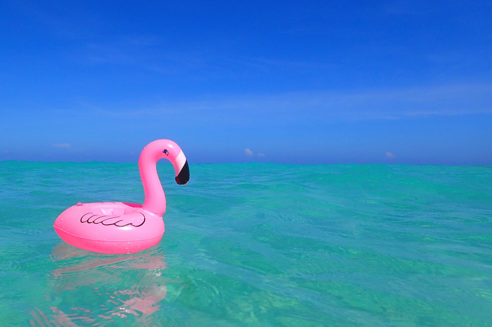 ため息が出るほど美しい海にピンクが映えるフラミンゴのドリンク